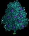 Deadly Nightshade Tree2-icon