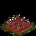 Purple Asparagus 33