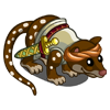 Quarter Master Quoll-icon