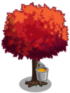Red Maple Tree2-icon