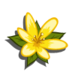 Yellow Wildflower-icon
