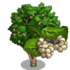 Giant White Mulberry Tree-icon