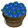 Morning Glory Bushel-icon