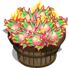 Fiery Dragon Fruit Bushel-icon