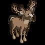 White-tailed Buck-icon
