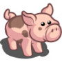 Fabulous Plump Pig-icon