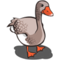 American Buff Goose-icon