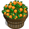 Chaya Spinach Bushel-icon