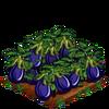 Eggplant-super