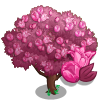 Pink Tulip Tree-icon