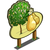 European Pear Tree