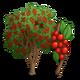 Possumhaw Holly Tree-icon