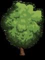 Tamarind1-icon