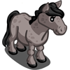 Gray Australian Pony-icon