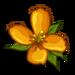 Orange Wildflower-icon