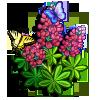 Pink Buckeye-icon