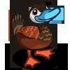 Ruddy Duck-icon