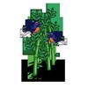 Bamboo Birds-icon