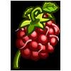 Japanese Wineberry-icon