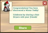 Winter Teddy Message Small Snow Treasure