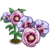 Desert Rose Full Bloom-icon