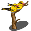 Oriole-icon
