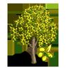 Yellow Shower Tree-icon