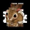Baby Jackrabbit