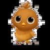 Baby Hubbard Chicken