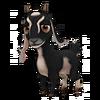 Black Nubian Goat