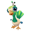 Baby Green Peacock