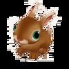 Baby Flemish Rabbit