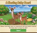 Deer Nest