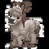 Baby Provence Mini Donkey