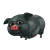 Pot-Bellied Pig