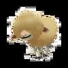 Baby Merino Sheep