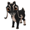 Baby Black Nubian Goat