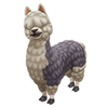 Black Backed Bolivian Alpaca