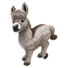 Provence Mini Donkey