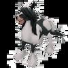 Baby Gypsy Horse