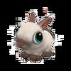 Baby Sealpoint Dwarf Rabbit