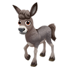 Baby Thuringian Forest Donkey