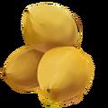 Tree general palm coconut doober-ece561990864c24239b68ea89f62865a.png