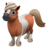 Brown Skewbald Mini Horse