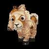 Baby Mummy Goat