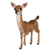 Whit-Tailed Deer