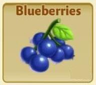 File:Blueberry.jpg