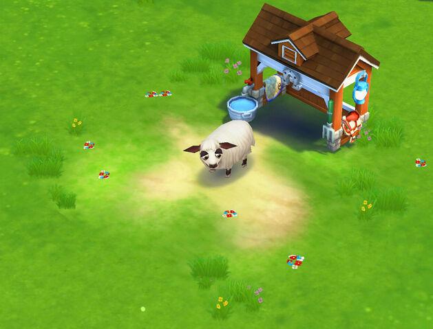 File:Daglic Sheep.jpg