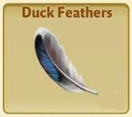 File:DuckFeathers.jpg