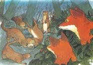 Lean Foxes